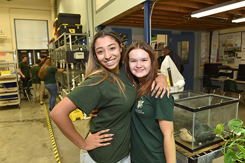 Two environmental girl posing for a picture in the environmental shop