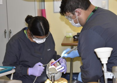 Dental Assisting students practicing skills on false patient