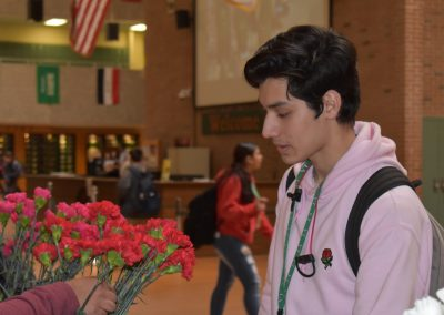 boy gazing at red flowers