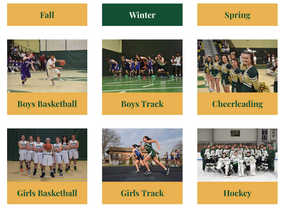 Winter Sports Home Page Link