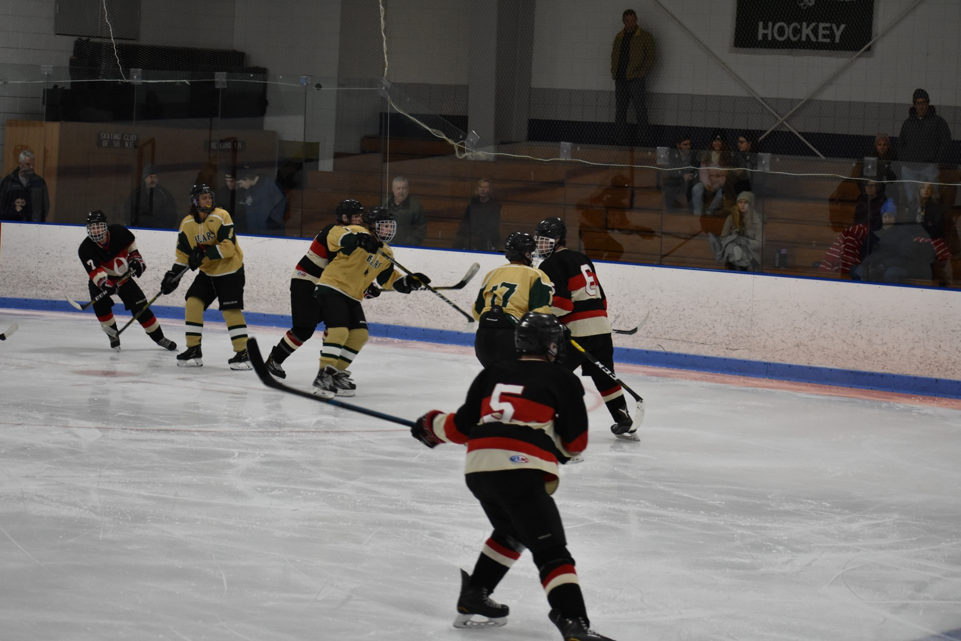 players skating