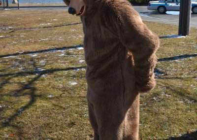 Participant In Bears Mascot Costume