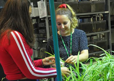 Environmental students working together with plants