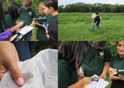 Environmental collecting data