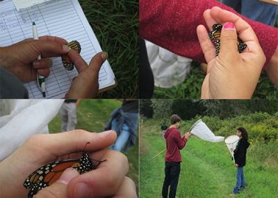 Environmental students holding monarch butterflies