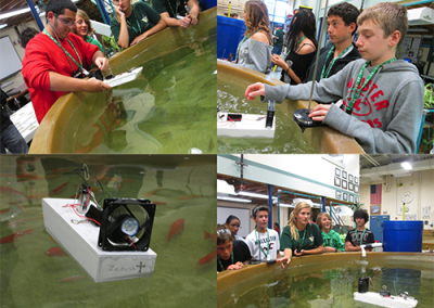 Environmental students working with fish-tank