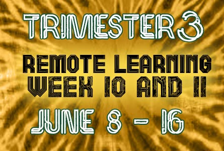 Trimester 3 Remote Learning Week 10 and 11 Featured Image June 8 - 16